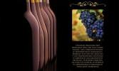 winosfera-chile